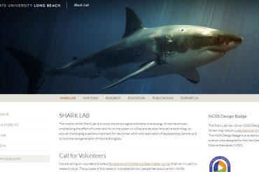Shark Lab - California State University, Long Beach